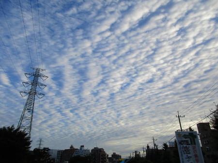 20150911_img_0121